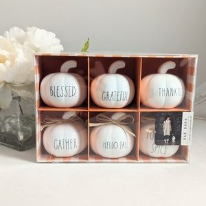 Rae Dunn Harvest Mini Pumpkin Decor Set